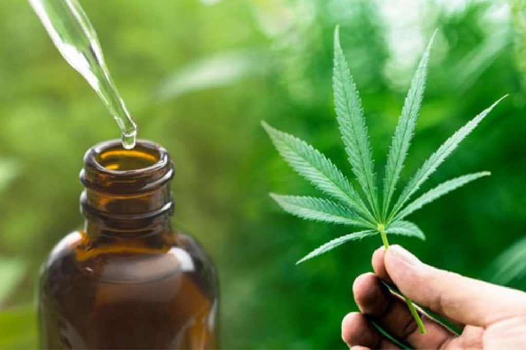 using cbd oil